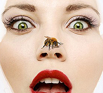 bee venom in cosmetics